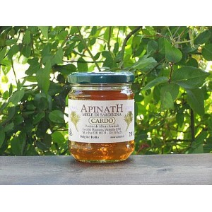Miele di cardo - Apinath