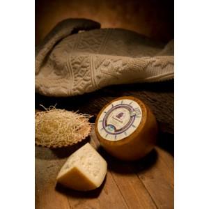 Seasoned Pecorino sardo Pdo - Italian cheese supply - Sepi