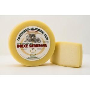 Dolce Sardegna, fresh pecorino cheese - wholesale Italian cheese - Cao Formaggi