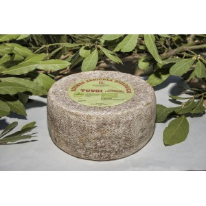 Pecorino cheese Poiana Bio - Floris